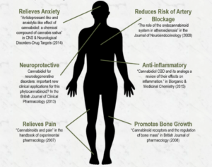 cbd oil and body issues relief
