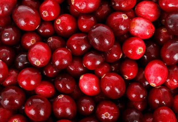 red fresh cranberries