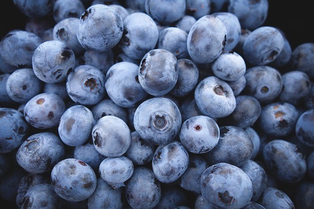 blueberries in a small heap